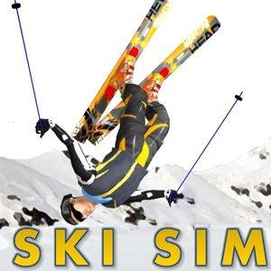 Image Ski Sim