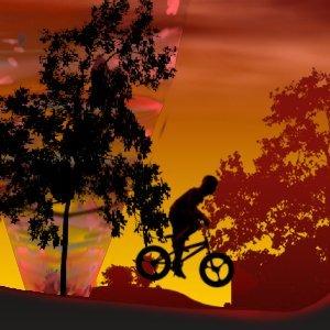 Image Twilight BMX